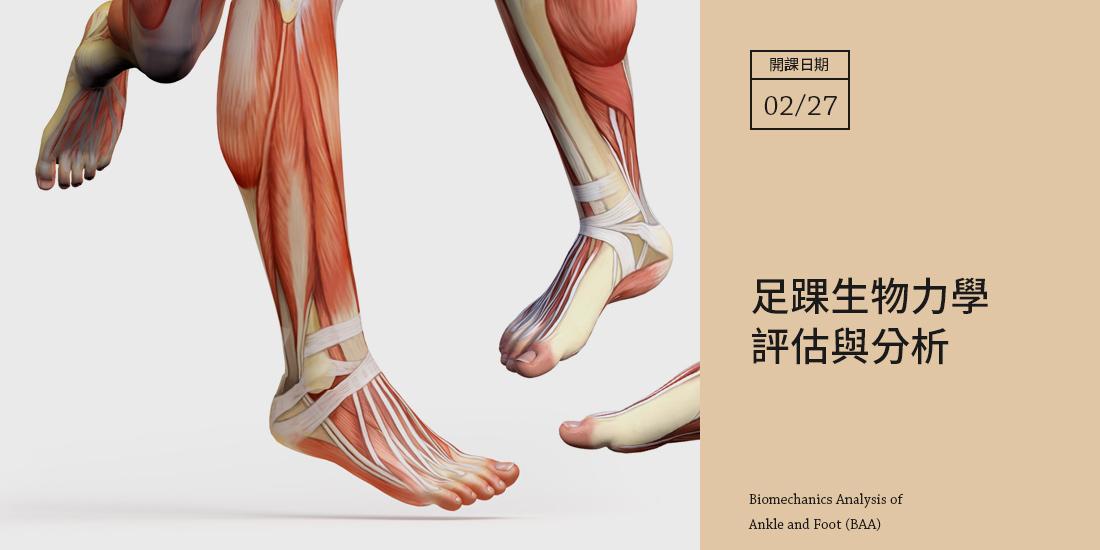 足踝生物力學評估與分析--高雄場